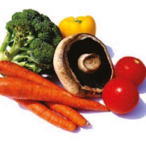 TJFU - Filière Agro-alimentaire